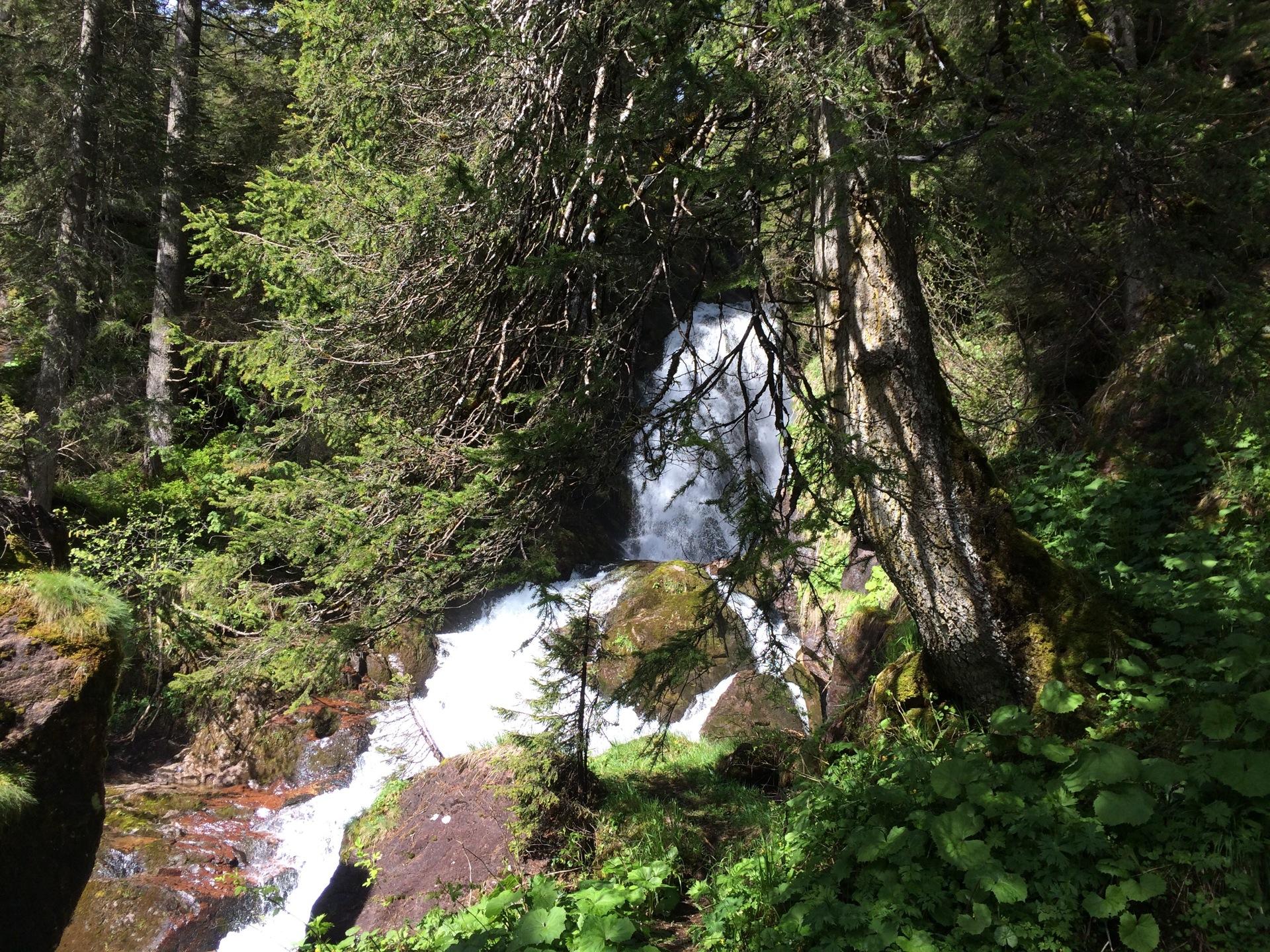 Die Tour beginnt im Urwald mit wilden Wassern